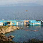 Costa Concordia 344