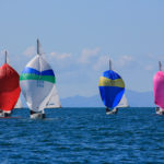 Soling_8-206