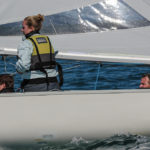 Soling_8-313