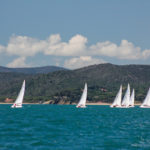 Soling_8-391