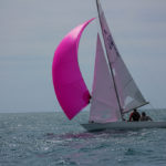 Soling_Spring_T_2014-0044