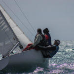 Soling_Spring_T_2014-0280
