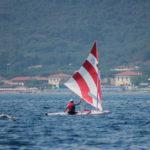 Sunfish_Nazinale_CVCP-9120