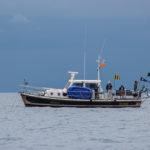 Sunfish_Nazinale_CVCP-9582